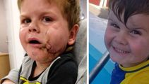 Dog attack leaves Christchurch boy with life-changing injuries