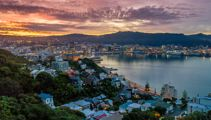 Mike Yardley: Urban safari in Wellington