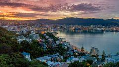 Mike Yardley: Urban safari in Wellington