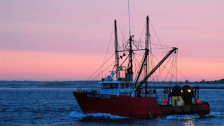 Three seafood companies support putting cameras on fishing boats