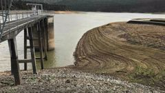 Auckland has lost more water from leaky pipes than it has asked residents to save. (Photo / File)