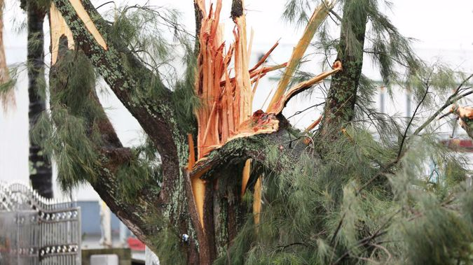 High winds, torrential rain and tornadoes battered East Tamaki and Papatoetoe at the end of June and more strong winds are forecast for Auckland in the next 36 hours. Photo / Hayden Woodward