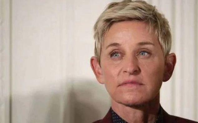 Ellen has quit her talk show. (Photo / File)