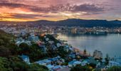Heather Du Plessis-Allan: More madness from Wellington City Council