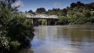 At Waikato River, near Tuakau, 10 of 37 samples taken over the decade carried E.coli levels that were above safe limits. Photo / File