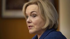 Judith Collins wants the election delayed - but everyone else has had to adapt. (Photo / NZ Herald)
