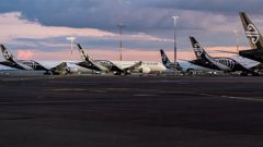 Travel restrictions mean Kiwis are staying home and travel agents are in dire straits. (Photo / NZ Herald)