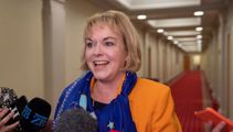 Judith Collins and her softer side - 'I'm not one dimensional'