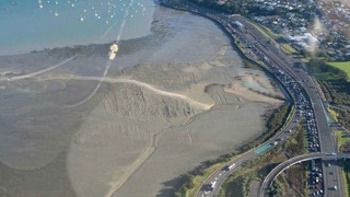 Company offering helicopter trips to escape Auckland Harbour Bridge traffic