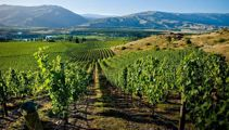 Visa exemptions a huge relief for wine industry