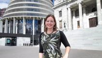 Wealth tax 'a bottom line' for a Greens-Labour government: Genter