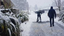 Flights cancelled as heavy snow blankets the South Island