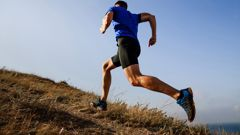 Researchers said the gluteus maximus was the key to speed. (Photo / Shutterstock via CNN)