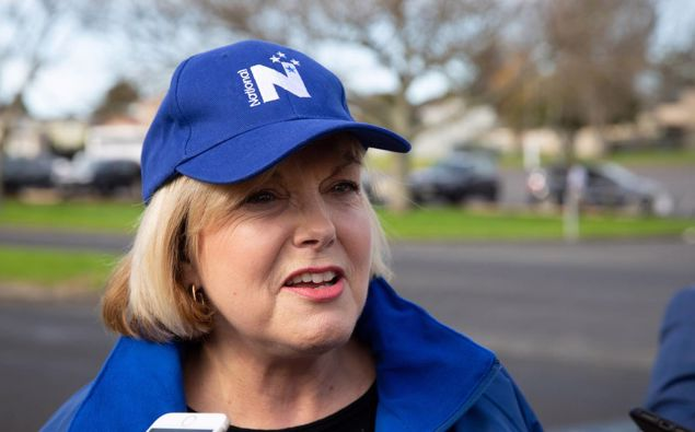 National Party leader Judith Collins. Photo / Sylvie Whinray