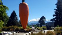 Mike Yardley: Free-wheeling the Ruapehu District