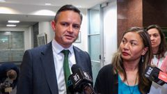 Green Party co-leaders James Shaw and Marama Davidson returning from their talks with the Labour Party leadership at Parliament yesterday. Photo / Mark Mitchell