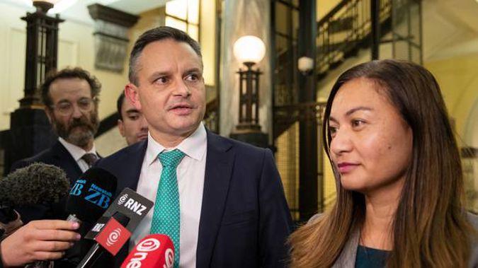 James Shaw and Marama Davidson. (Photo / NZ Herald)
