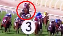 Tragedy as Melbourne Cup horse euthanized