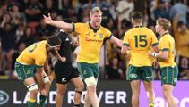 Wallabies upset All Blacks as both teams get red cards in physical encounter