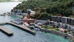 An artist's impression of an aerial view of the proposed development of Shelly Bay. Photo / Supplied