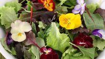 Nici Wickes: Making sensational salads