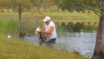 Florida man wrestles puppy from jaws of alligator