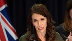 Prime Minister Jacinda Ardern says New Zealand has a lower tolerance for cases than Australia. Photo / Mark Mitchell