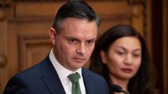 Green Party co-leaders James Shaw and Marama Davidson. Photo / Mark Mitchell