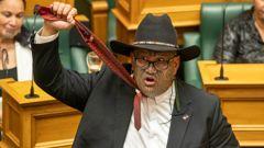 MāoriParty co-leader Rawiri Waititi. (Photo / Mark Mitchell)