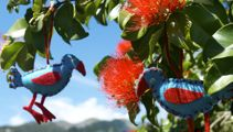 Ruud Kleinpaste: Taking a closer look at the Pohutukawa