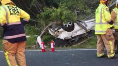 Scene of the accident which left two people dead on the Clevedon-Kawakawa Rd yesterday. Photo / Kawakawa Bay Volunteer Fire Brigade