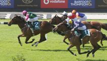 What to expect from the Boxing Day races in Ellerslie