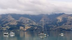 Banks Peninsula, South Island. (Photo / Getty)