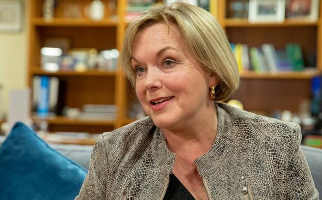 National leader Judith Collins. (Photo / Herald)
