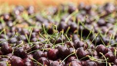 Cherries. (Photo / Getty)