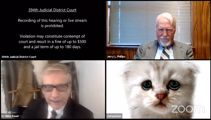 Lawyer appears as cat during court hearing thanks to Zoom filter fail