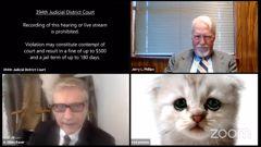 A hearing took a detour when an attorney showed up looking like a kitten. (Photo / AP)
