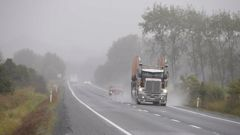 Roads south of Whangārei are busy with traffic with the rain making visibility difficult. Photo / Michael Cunningham