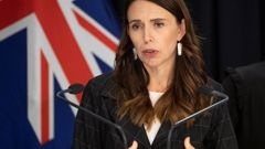 Covid-19: PM Jacinda Ardern and health chief Ashley Bloomfield update on cluster, Covid vaccine