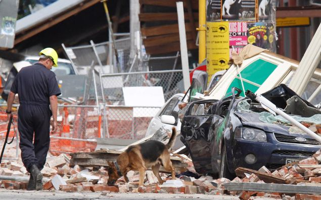 A police dog and handler searching for victims of the 2011 earthquake in central Christchurch. Photo / Mark Mitchell