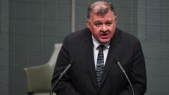 Former Liberal MP Craig Kelly. (Photo / AAP)