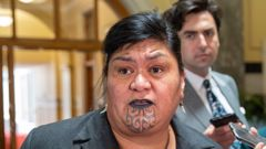 Local Government Minister Nanaia Mahuta authored the bill on Māori wards. Photo / Mark Mitchell