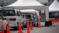 A queue waiting to get tested for Covid-19 at the Community Testing Centre, Fair Mall, Otara. Photo / Sylvie Whinray