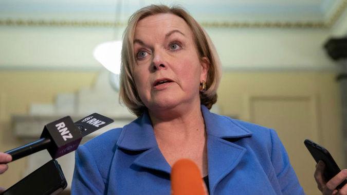 National leader Judith Collins (Photo / NZ Herald)