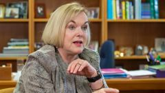National leader Judith Collins. (Photo / NZ Herald)