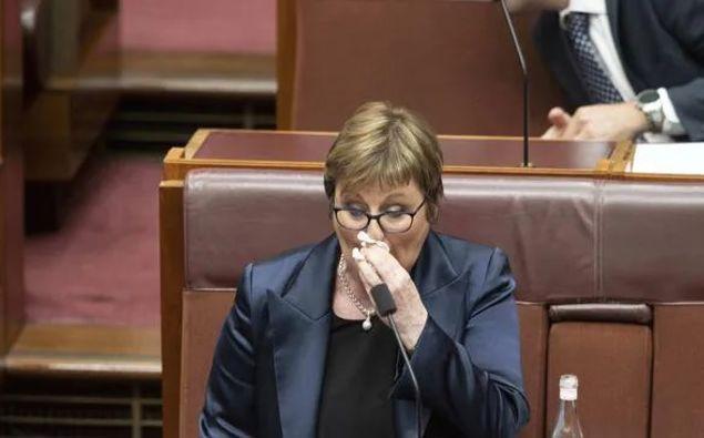 Defence Minister Linda Reynolds. (Photo / NCA NewsWire)