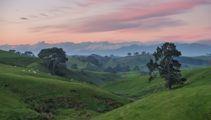 Mike Yardley: Roaming Waikato's Riches
