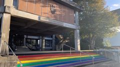 An Upper Hutt ratepayer didn't like to see his rates go towards the rainbow steps. Photo / Dylan Bentley