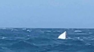 Dramatic rescue at sea: Four boaties made distress call just before phone was swept away