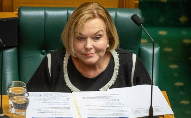 National Party leader Judith Collin. (Photo / NZ Herald)